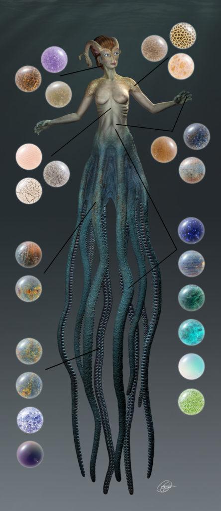 Proyecto Cecaelia. Detalles de imágenes utilizadas en el texturizado con mudbox.