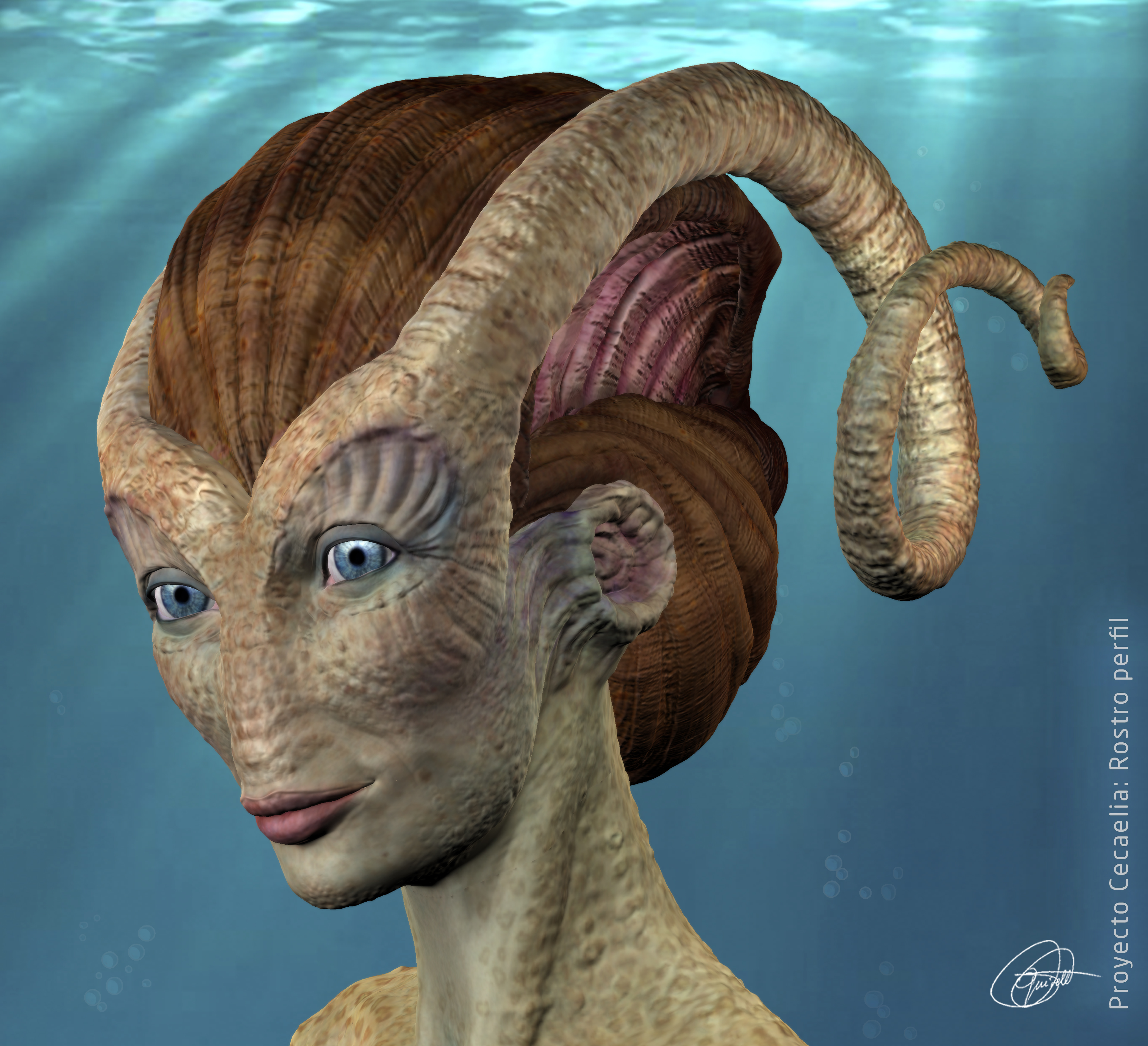 Criatura Cecaelia rostro perfil.