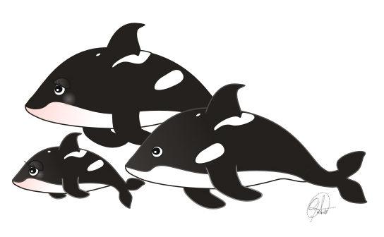 Orcas en familia